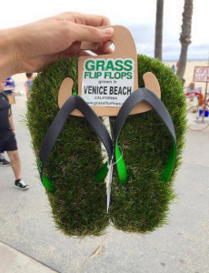 California_Grass_FlipFlops
