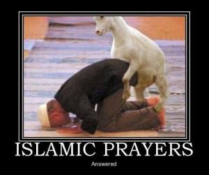 Islam_Goat_Prayers_Answered