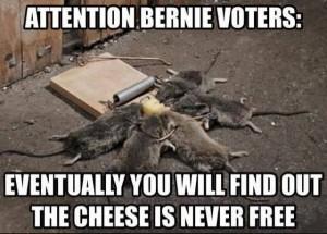 Bernie_Sanders_Cheese_Not_Free