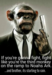 Guns_Fight_Like_Third_Monkey_On_Noahs_Ark