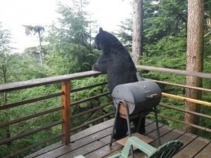 Bear_Porch_BBQ