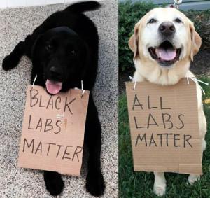 #Black_Labs_Matter