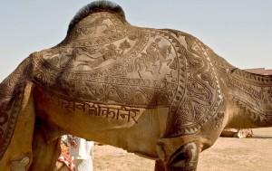 Islam_Camel_Love_Letter