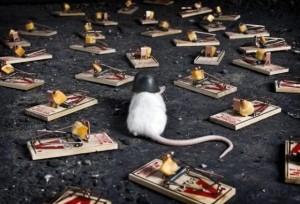 Mousetrap_Relationship