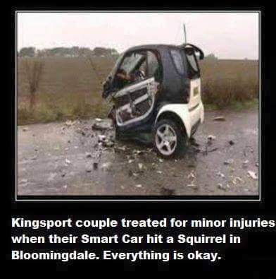 Squirrel_Vs_Smart_Car