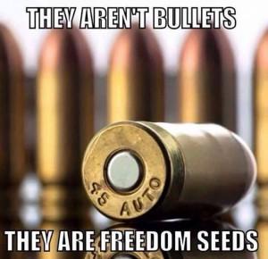 Gun_Bullets_Freedom_Seeds