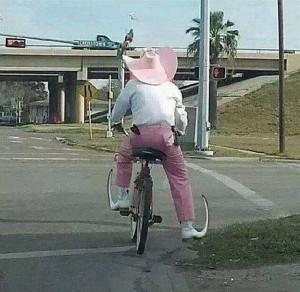 Hispanica_Pink_Bike_Boot_Elf