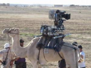 Islam_Camel_Cam