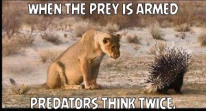 Guns_Armed_Prey