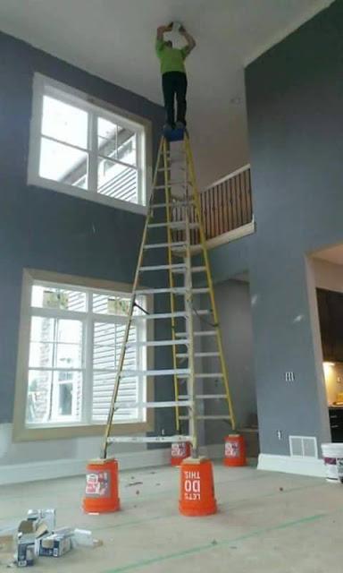 Darwin_Bucket_Ladder