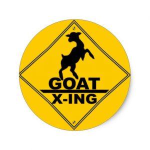 WTF_Goat_Xing