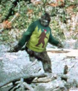 Bigfoot_Sighting_Bigfoot