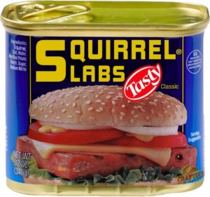 Bacon_Squirrel_Slabs