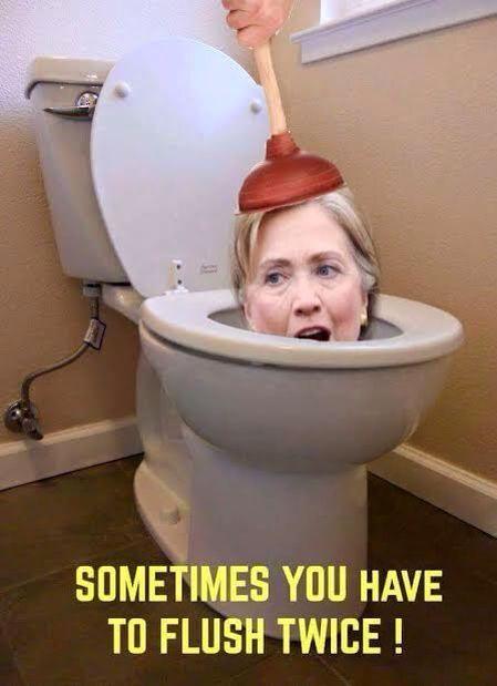 Hillary_Flush_Turd_Twice