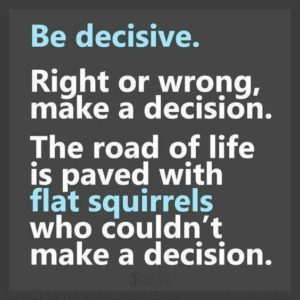 make_decision_flat_squirrel
