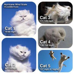 cat_hurricane_mathew_cat_scale