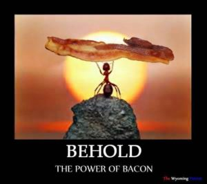 bacon_behold_the_power