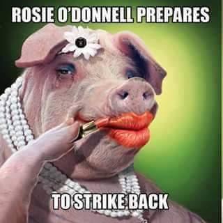 rosie_odonnell_new_lipstick_brand_ambassador_revlon