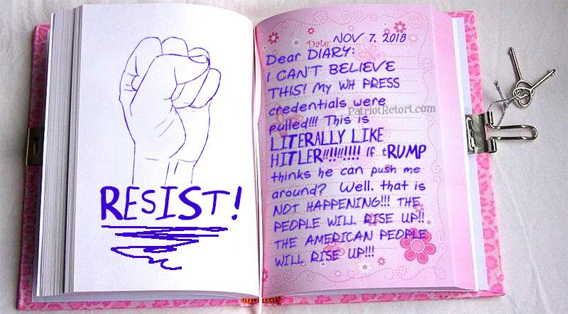 jim acosta dear diary