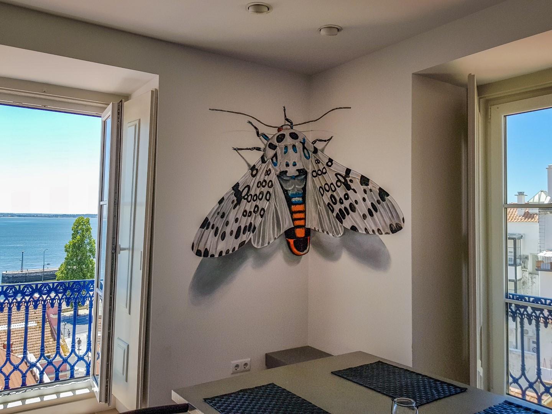 StreetArt_ODEITH_huge-leopard-moth-ofeith-anamorphosis