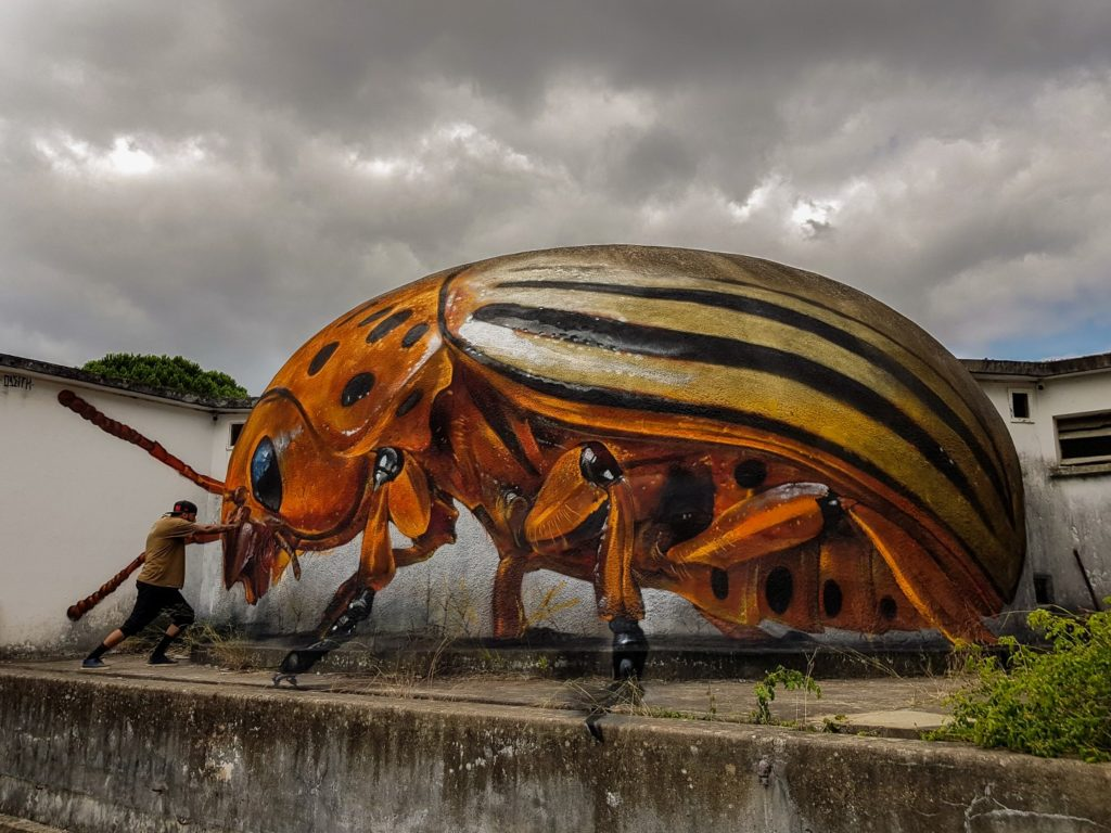 StreetArt_ODEITH_huge-potato-bug