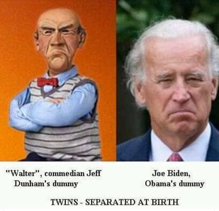 Joe Biden And Walter Go On The Stump Thepubliceditor Com