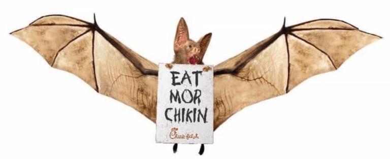 Coronavirus_Bat_Eat_Mor_Chikin_PL.png