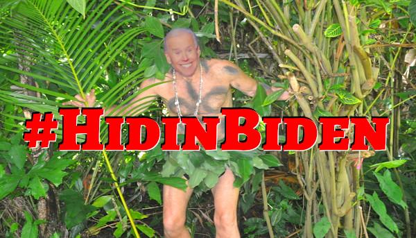 Biden_In_Hidin'_01