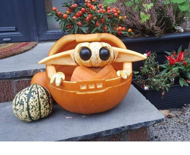 Pumpkin_006