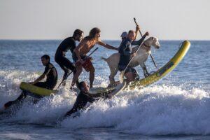 Goat_Surfing_03